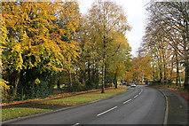 SJ7886 : Hale Road passing Halecroft Park by Bill Boaden