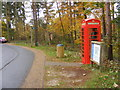 TL7980 : Birch Telephone by Gordon Griffiths