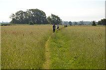 SP4710 : Short cut through the grass by N Chadwick