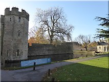 ST5545 : The moat of the Bishop's Palace, Wells by David Smith