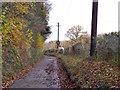 SP8703 : King's Lane by Robin Webster