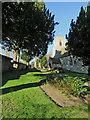 TL4882 : In Coveney churchyard in November by John Sutton