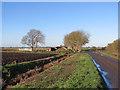 TL5281 : On West Fen Road in November by John Sutton