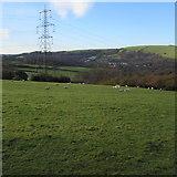 SS9086 : Electricity pylon in a field near Bettws by Jaggery