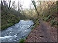 SK1373 : River Wye by Dave Dunford