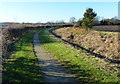 SK6832 : Towpath along the disused Grantham Canal by Mat Fascione