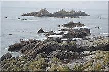 SX4948 : Renney Rocks by N Chadwick