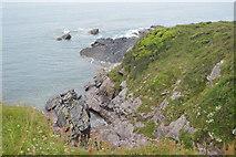 SX4948 : Between Westlake Bay and Heybrook Bay by N Chadwick