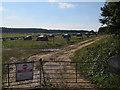 TG1313 : Outdoor pigs near Ringland by Hugh Venables