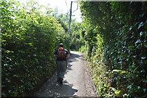 SX4350 : South west Coast Path by N Chadwick