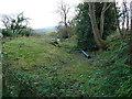 SO5895 : Sunken greenway at Patton Grange by Richard Law
