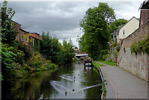 SO8171 : Staffordshire and Worcestershire Canal in Stourport by Roger  Kidd