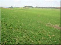 SK2368 : Calton Pastures by Trevor Rickard