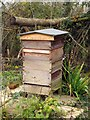 SP5103 : Beehive by the path by Steve Daniels
