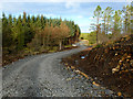 NG3055 : Forest track in Waternish by John Allan