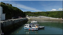 X4798 : Dunabrattin (Boatstrand) Harbour - Co Waterford by Colin Park