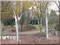 SU3723 : Dragonfly arch at Hillier Gardens by M J Richardson