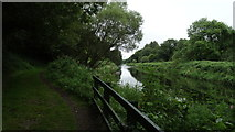 S8666 : Altamont Gardens, Co Carlow - path beside R Slaney by Colin Park