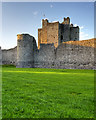 N8056 : Trim Castle Keep by David Dixon