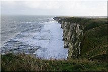TA2272 : North Cliff, Flamborough by Ian S