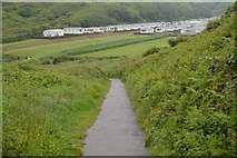 SX4950 : South West Coast Path descending to Bovisand Bay by N Chadwick