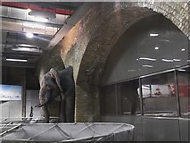 TQ3179 : Elephant carving, Waterloo Underground Station by Robin Sones