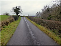 H4277 : Connaghty Road, Mountjoy Forest West Division by Kenneth  Allen