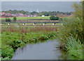 SJ9422 : The River Penk north of Baswich, Stafford by Roger  Kidd