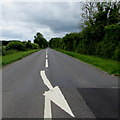 ST9798 : White arrow painted on the A433 near Cirencester by Jaggery