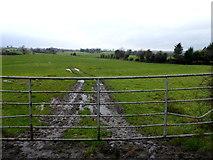 H4277 : Muddy ground, Tattraconnaghty by Kenneth  Allen