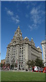 SJ3390 : Royal Liver Building, Liverpool by Colin Park