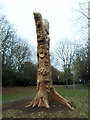 TA0830 : Carved tree trunk in Pearson Park : Week 49