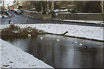SK1260 : Hartington Pond - ducks in the snow by Malcolm Neal