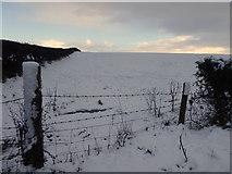 H4277 : Snow, Tattraconnaghty by Kenneth  Allen