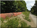 SE2123 : Pipe alongside the Greenway in Heckmondwike by Stephen Craven