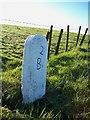 SX0969 : Old Milestone by Ian Thompson