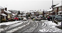 ST3090 : Snowy Laurel Crescent, Malpas, Newport by Jaggery