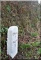 SW9040 : Old Milestone by Ian Thompson