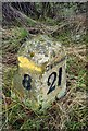 NZ0918 : Old Milestone by the A688, south west of Staindrop by IA Davison
