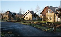 NS3586 : Carrick Lodges by Richard Sutcliffe