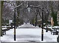 SK5903 : New Walk in Leicester : Week 50
