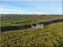 SE0064 : Malham Moor and Grass Wood by Carroll Pierce
