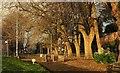SX9164 : Path, Upton Park by Derek Harper
