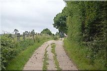 TQ3228 : Track to Stone Hall by N Chadwick