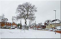 SO9096 : Snowing in Penn, Wolverhampton by Roger  Kidd