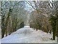 SO8694 : Snowy Railway Path by Gordon Griffiths