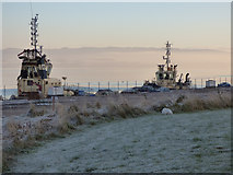 NS3075 : Tugs at Great Harbour by Thomas Nugent