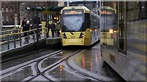 SJ8397 : Wet tram reflections by David Martin