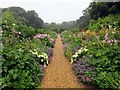 SZ4083 : The double herbaceous borders at Mottistone Manor by Steve Daniels