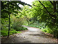 SX8772 : The entrance to Hackney Marshes by Chris Allen